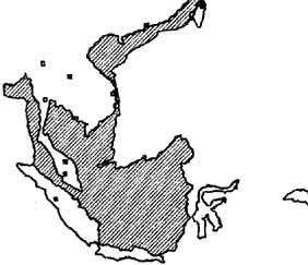 Lục địa Sunda trước khi bị ngập chìm trong trận Đại Hồng Thuỷ cách đây khoảng 8000 năm, theo giả thuyết của Stephen Oppenheimer.