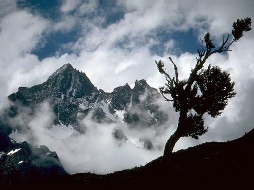 Cao Nguyên Tây Tạng Và Cao Nguyên Tây Tạng