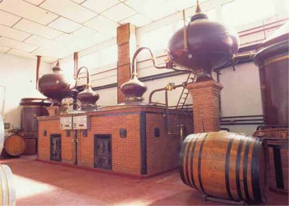 Tìm hiểu về ruợu Cognac