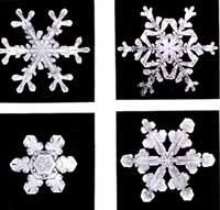 SnowflakesWilsonBentley2